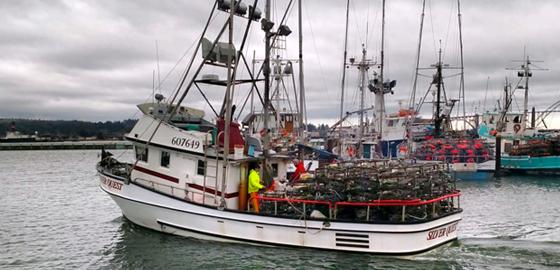 Fishermans Market Fishing Vessel SilverQuest